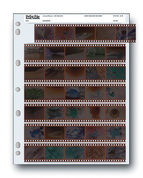 Holds seven 35mm strips of 5 frames, 35 frames total