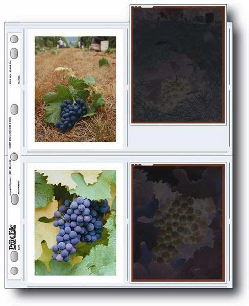 Polaroid album pages